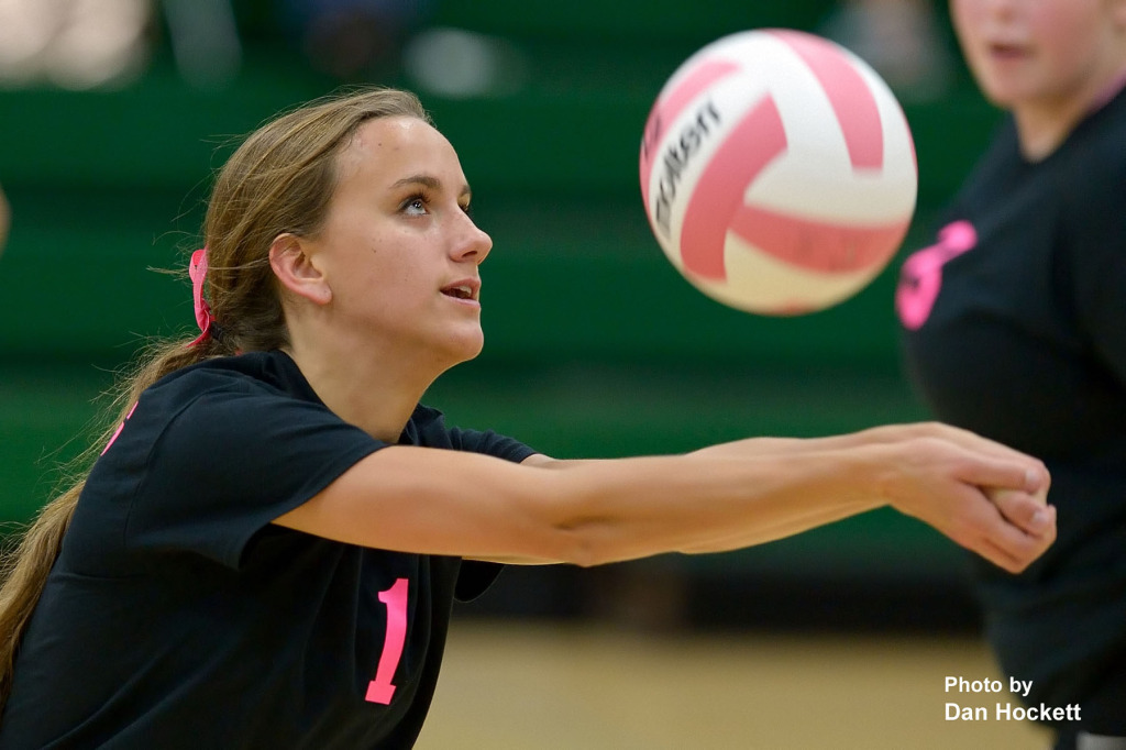 Photo by Dan Hockett West Burlington's Aubrey Schmitt keeps the ball in play against Danville Tuesday night in West Burlington. West Burlington defeated Danville, 25-14, 25-16, 25-20.
